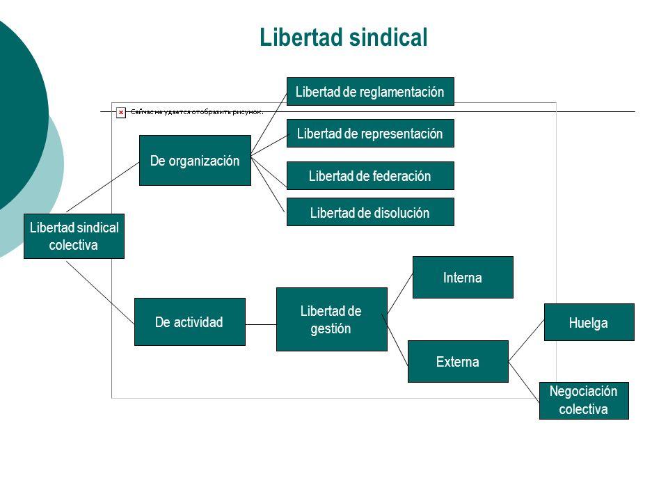 Obstáculos subsistentes y nuevos: titularidad de la libertad sindical Derechos civiles: atentados contra la vida, la seguridad y la libertad de dirigentes.