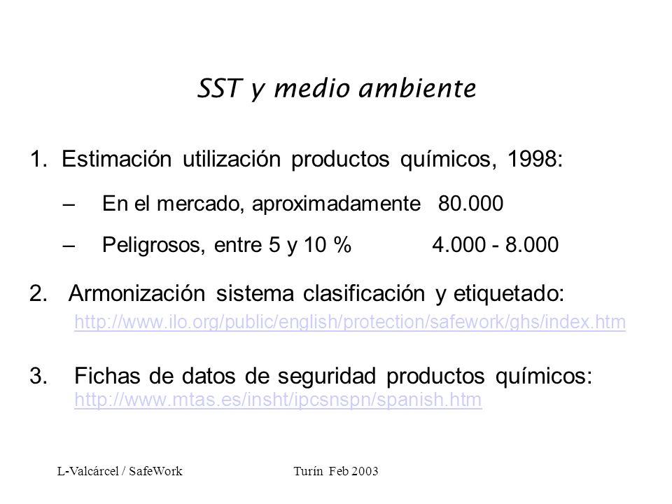 L-Valcárcel / SafeWorkTurín Feb 2003 Adopción de códigos de conducta en la empresa 1.