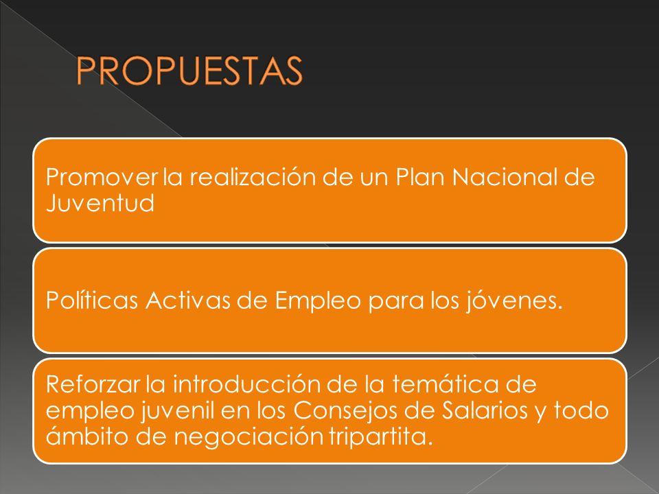 Promover la realización de un Plan Nacional de Juventud Políticas Activas de Empleo para los jóvenes.