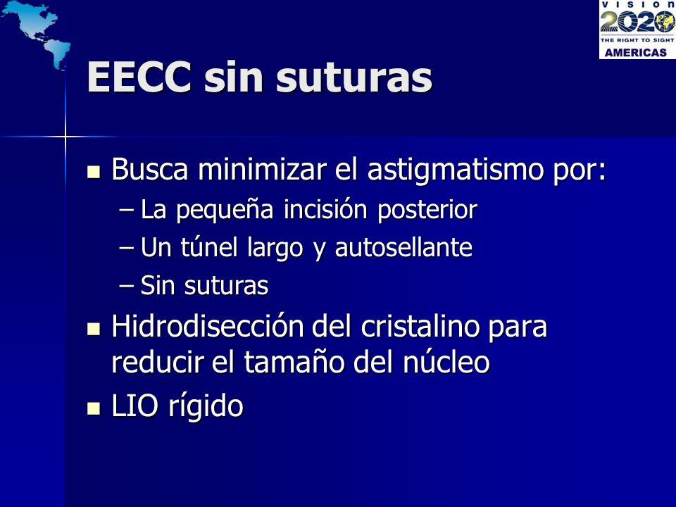 EECC sin suturas Busca minimizar el astigmatismo por: Busca minimizar el astigmatismo por: –La pequeña incisión posterior –Un túnel largo y autosellan