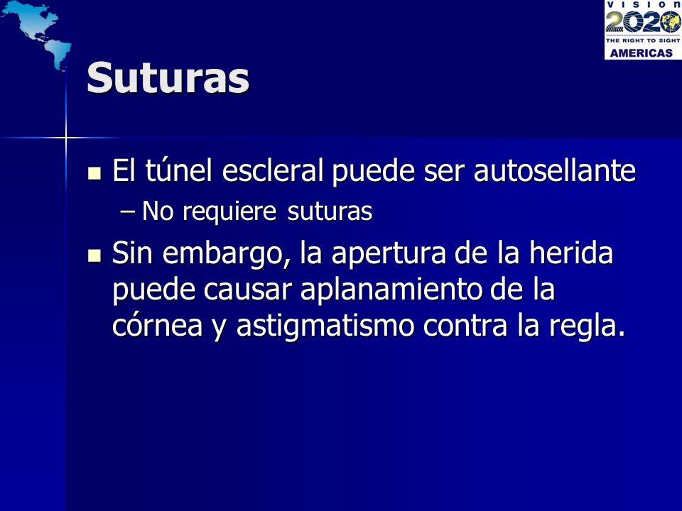 Suturas El túnel escleral puede ser autosellante El túnel escleral puede ser autosellante –No requiere suturas Sin embargo, la apertura de la herida p