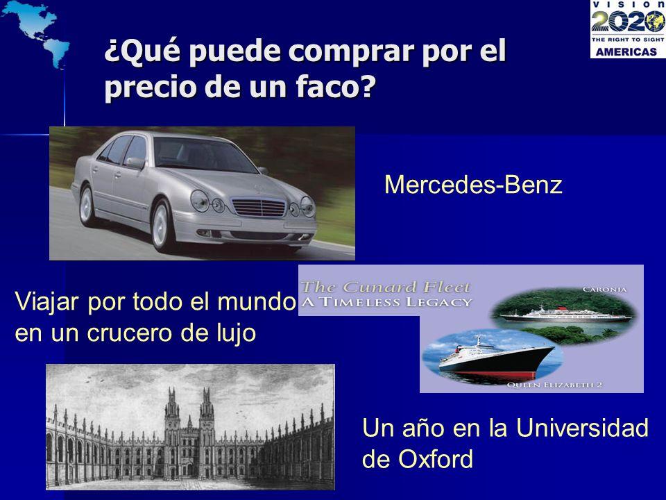¿Qué puede comprar por el precio de un faco? Mercedes-Benz Viajar por todo el mundo en un crucero de lujo Un año en la Universidad de Oxford
