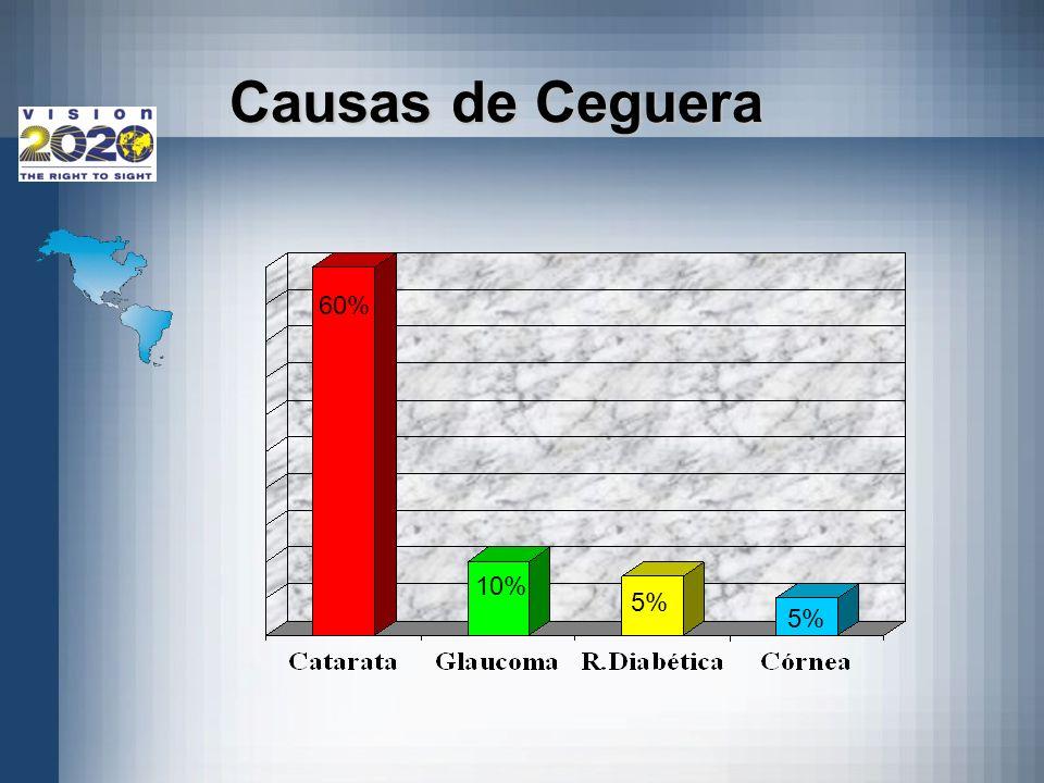 Grafica de caausas de ceguera 60% 10% 5% Causas de Ceguera