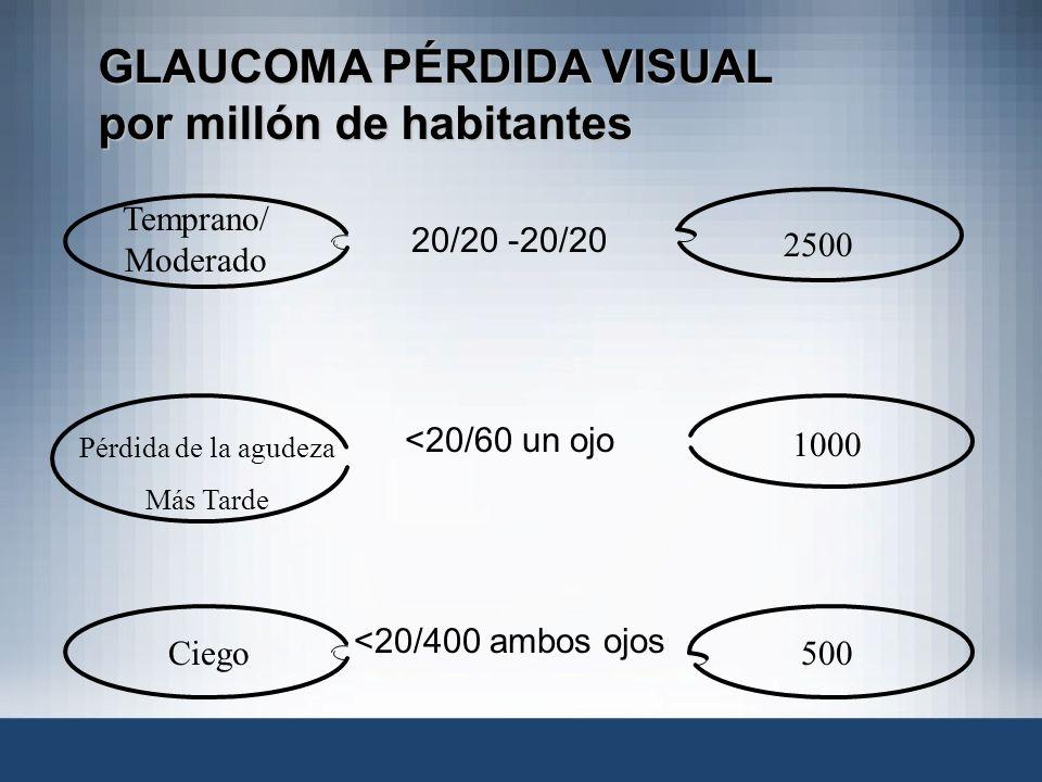 20/20 -20/20 <20/60 un ojo <20/400 ambos ojos GLAUCOMA PÉRDIDA VISUAL por millón de habitantes Temprano/ Moderado Pérdida de la agudeza Más Tarde Cieg