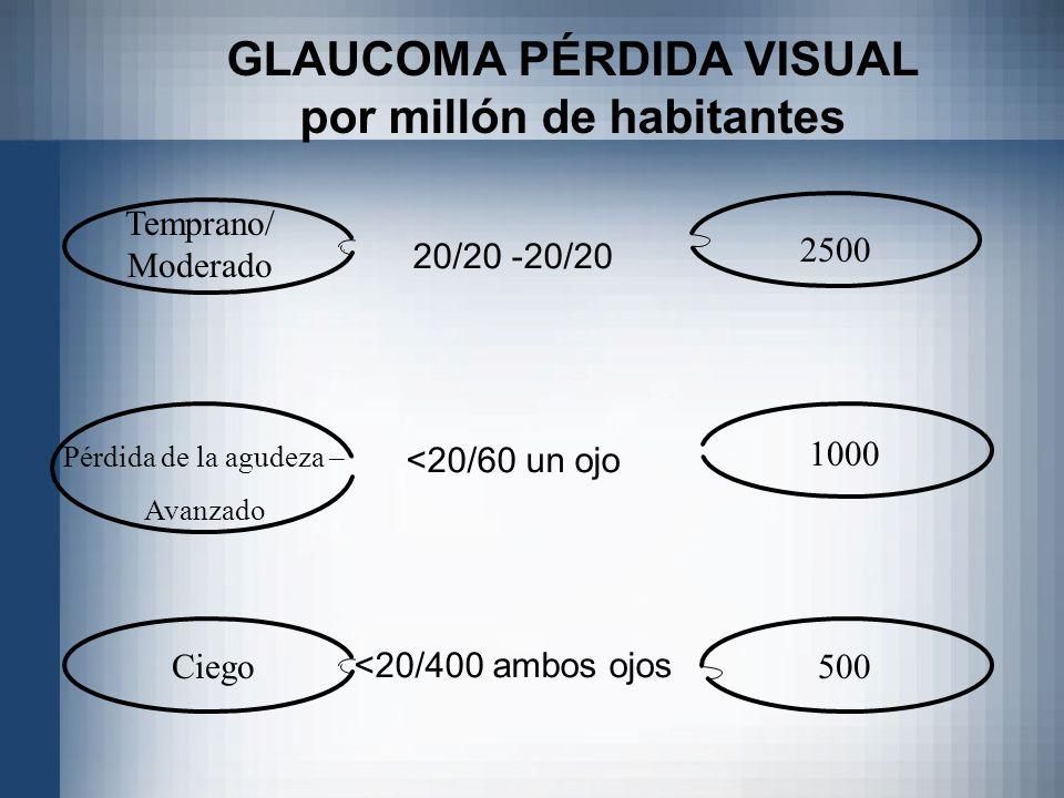 20/20 -20/20 <20/60 un ojo <20/400 ambos ojos GLAUCOMA PÉRDIDA VISUAL por millón de habitantes Temprano/ Moderado Pérdida de la agudeza – Avanzado Cie