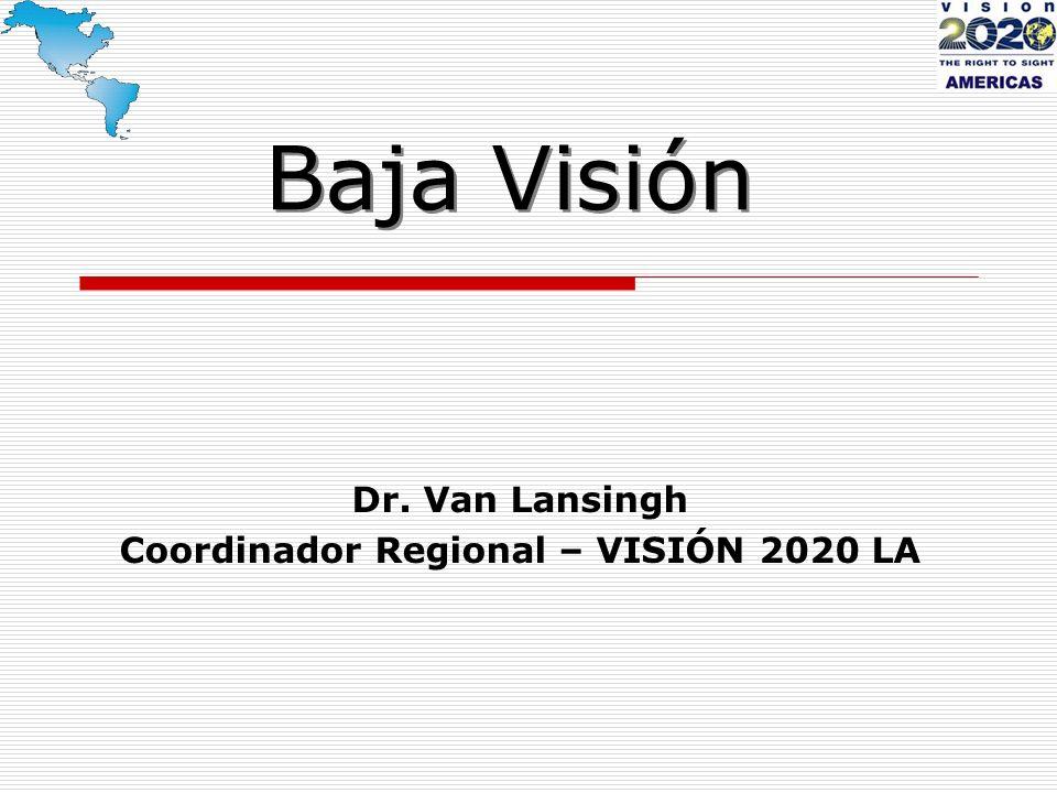 Baja Visión Dr. Van Lansingh Coordinador Regional – VISIÓN 2020 LA