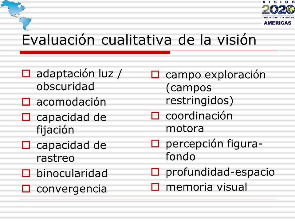 adaptación luz / obscuridad acomodación capacidad de fijación capacidad de rastreo binocularidad convergencia campo exploración (campos restringidos)