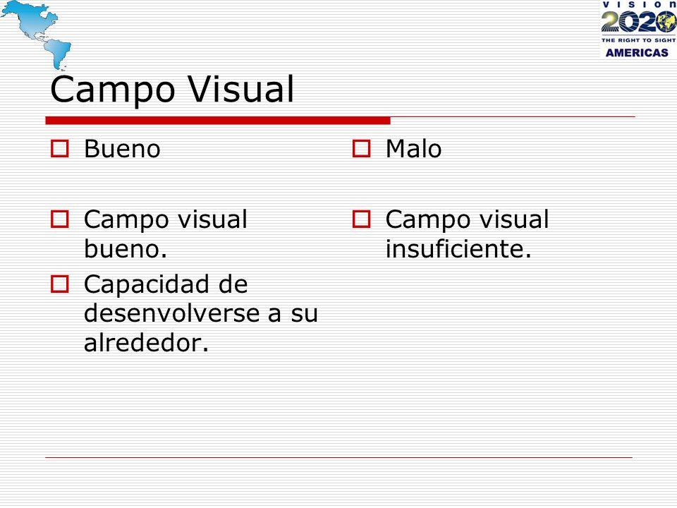 Campo Visual Bueno Campo visual bueno. Capacidad de desenvolverse a su alrededor. Malo Campo visual insuficiente.