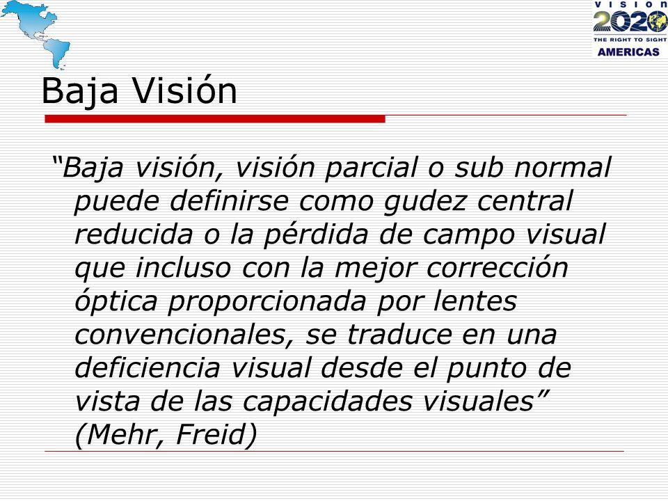 Baja visión Que se incluye en ésta definición: Que la pérdida es bilateral Que permanece algún resto visual Que las lentes convencionales no incluyen adiciones de más de 4 dioptrías, telescopios, agujero estenopéicos, visores u otros aparatos poco comunes