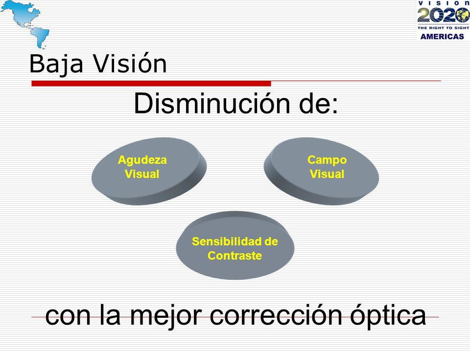 Baja Visión Disminución de: Agudeza Visual Sensibilidad de Contraste Campo Visual con la mejor corrección óptica