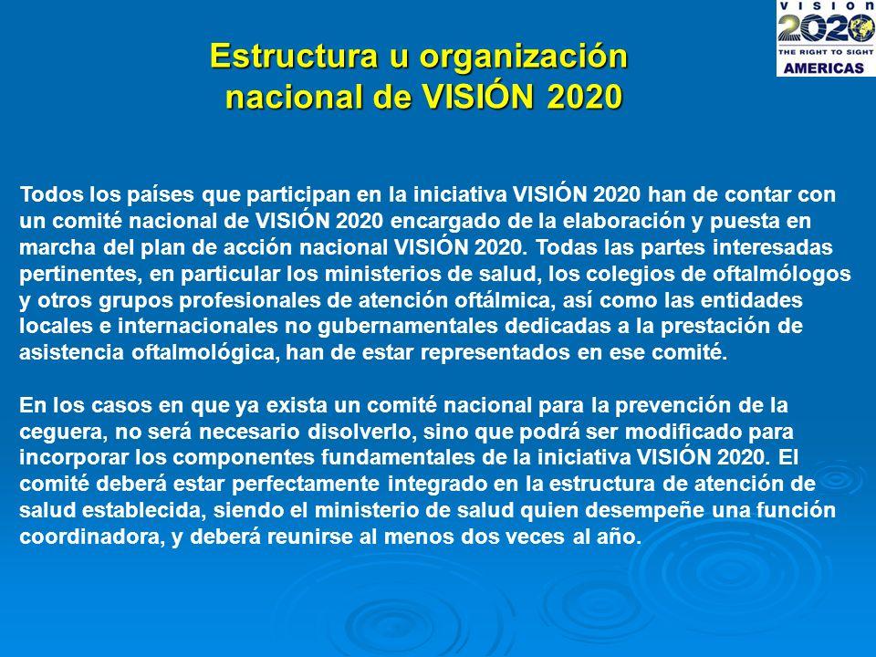 Estructura u organización nacional de VISIÓN 2020 Todos los países que participan en la iniciativa VISIÓN 2020 han de contar con un comité nacional de VISIÓN 2020 encargado de la elaboración y puesta en marcha del plan de acción nacional VISIÓN 2020.