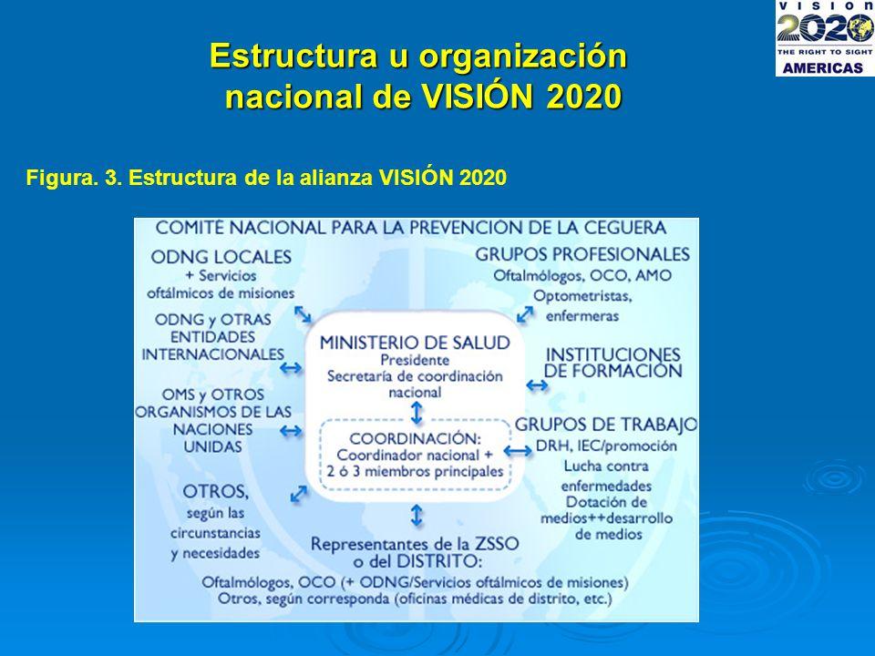 Estructura u organización nacional de VISIÓN 2020 Figura. 3. Estructura de la alianza VISIÓN 2020