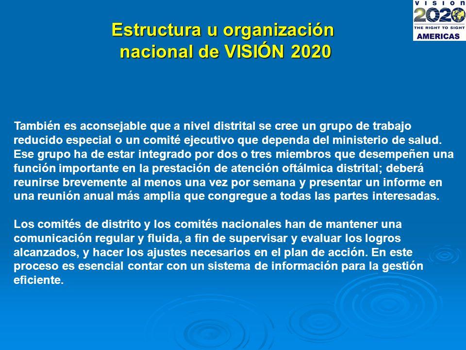 Estructura u organización nacional de VISIÓN 2020 También es aconsejable que a nivel distrital se cree un grupo de trabajo reducido especial o un comité ejecutivo que dependa del ministerio de salud.