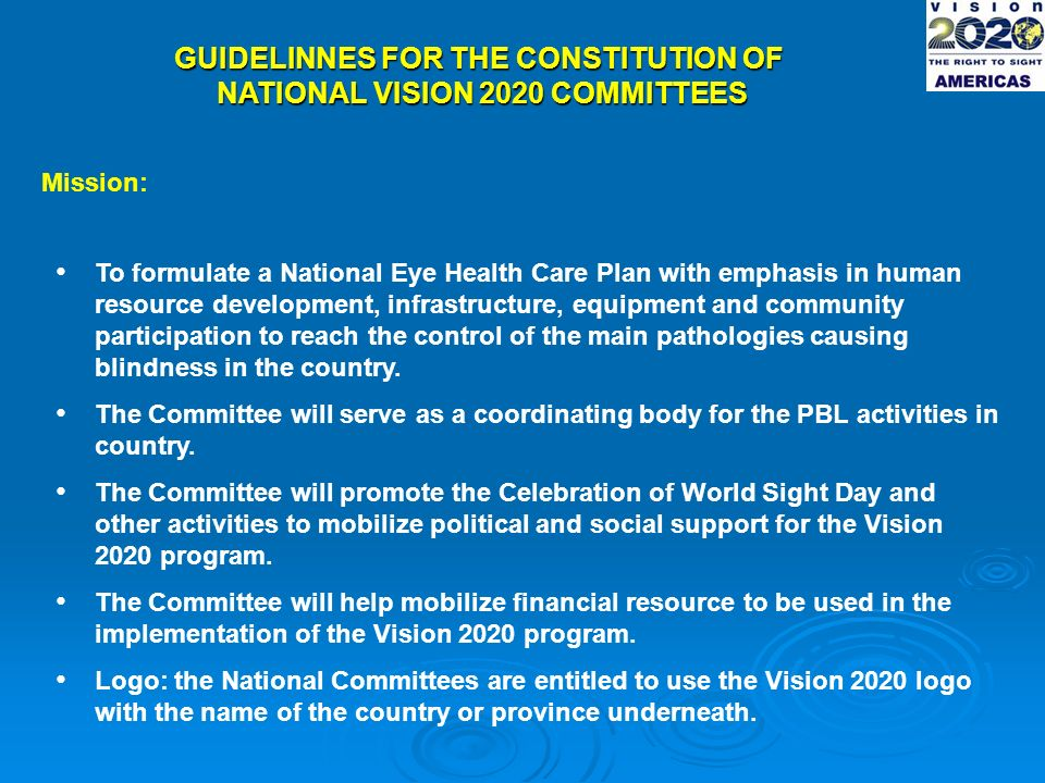 GUIDELINNES FOR THE CONSTITUTION OF NATIONAL VISION 2020 COMMITTEES Mission: To formulate a National Eye Health Care Plan with emphasis in human resource development, infrastructure, equipment and community participation to reach the control of the main pathologies causing blindness in the country.