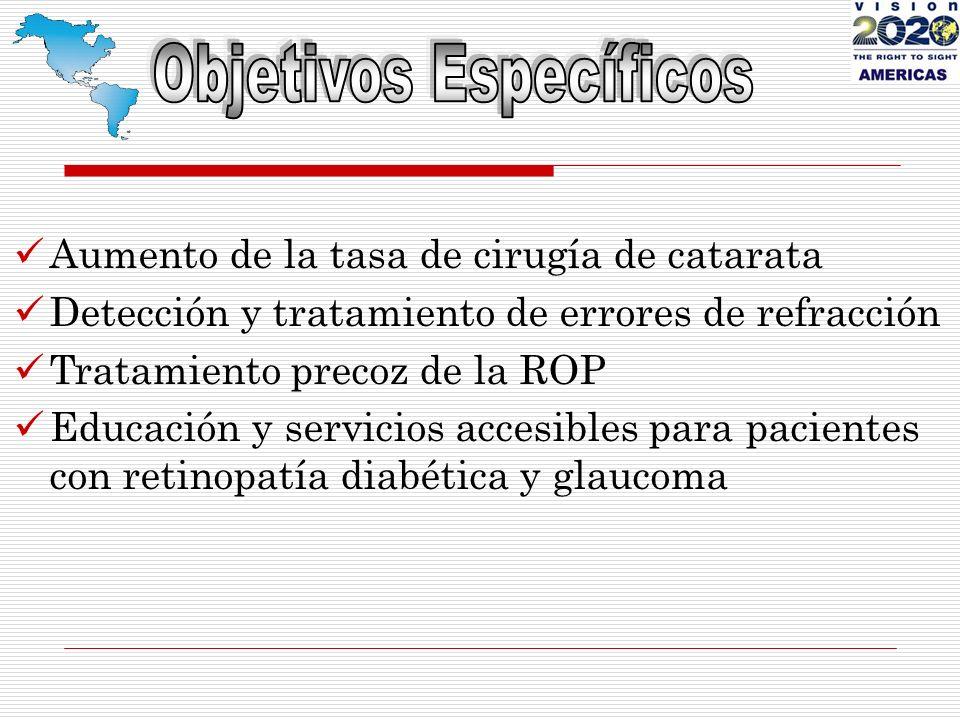 Aumento de la tasa de cirugía de catarata Detección y tratamiento de errores de refracción Tratamiento precoz de la ROP Educación y servicios accesibles para pacientes con retinopatía diabética y glaucoma