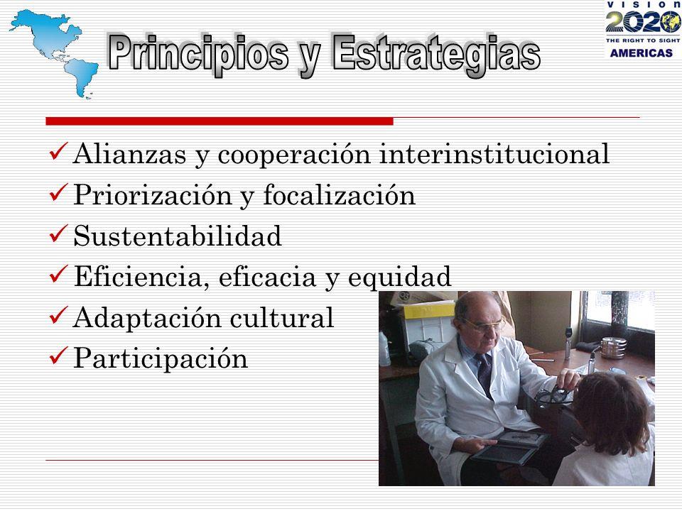 Alianzas y cooperación interinstitucional Priorización y focalización Sustentabilidad Eficiencia, eficacia y equidad Adaptación cultural Participación