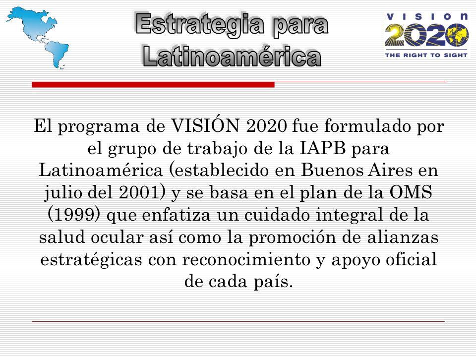 El programa de VISIÓN 2020 fue formulado por el grupo de trabajo de la IAPB para Latinoamérica (establecido en Buenos Aires en julio del 2001) y se basa en el plan de la OMS (1999) que enfatiza un cuidado integral de la salud ocular así como la promoción de alianzas estratégicas con reconocimiento y apoyo oficial de cada país.