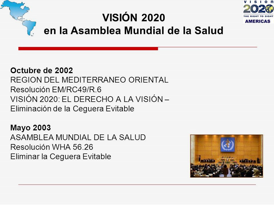 Octubre de 2002 REGION DEL MEDITERRANEO ORIENTAL Resolución EM/RC49/R.6 VISIÓN 2020: EL DERECHO A LA VISIÓN – Eliminación de la Ceguera Evitable Mayo 2003 ASAMBLEA MUNDIAL DE LA SALUD Resolución WHA 56.26 Eliminar la Ceguera Evitable VISIÓN 2020 en la Asamblea Mundial de la Salud