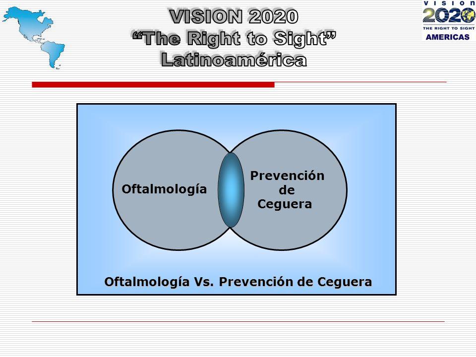 Situación Mundial de la Visión VISIÓN 2020: El Derecho a la Visión 1999 - 2000 VISIÓN 2020 en Perspectiva