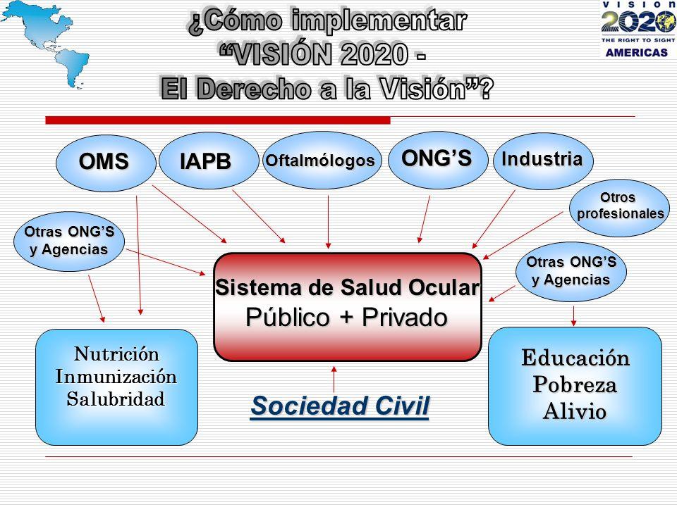 Sistema de Salud Ocular Público + Privado OMS ONGS IAPB NutriciónInmunizaciónSalubridad Otras ONGS y Agencias EducaciónPobrezaAlivio Otras ONGS y Agencias Sociedad Civil Industria Oftalmólogos Otros profesionales profesionales