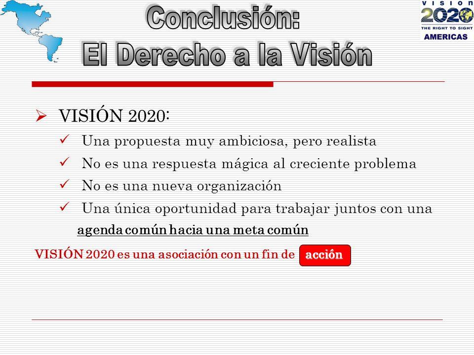 VISIÓN 2020: Una propuesta muy ambiciosa, pero realista No es una respuesta mágica al creciente problema No es una nueva organización Una única oportunidad para trabajar juntos con una agenda común hacia una meta común acción VISIÓN 2020 es una asociación con un fin de acción
