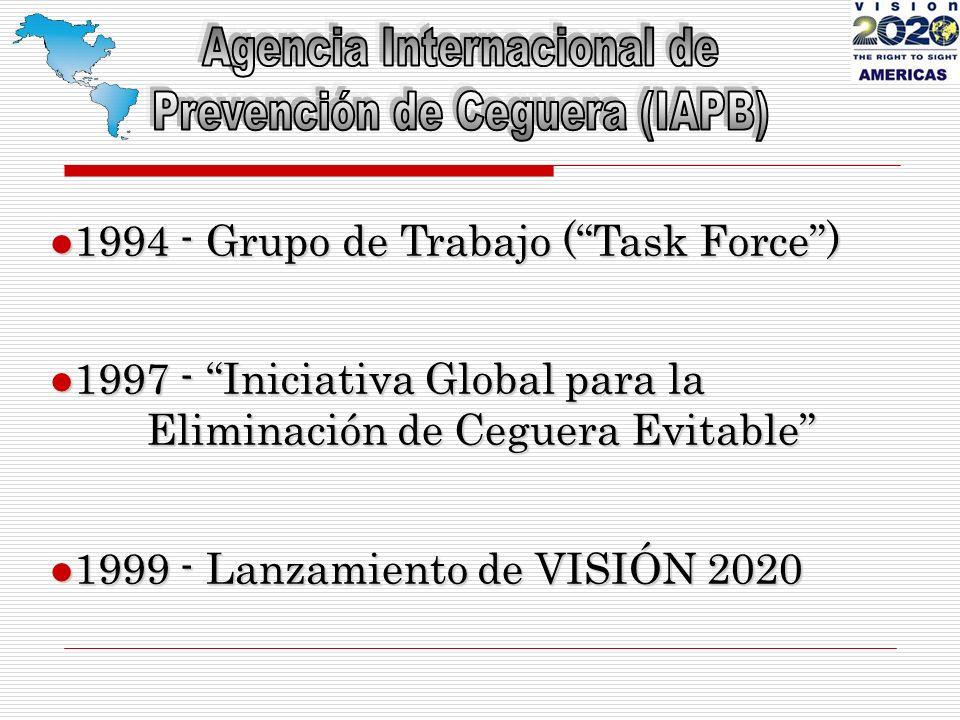 EN ALGUNOS PAÍSES, NO CONTAMOS CON PERSONAS DE CONTACTO PARA VISIÓN 2020 EN LA MAYORÍA DE LOS CASOS, LOS OFTALMÓLOGOS SE ENCUENTRAN CONCENTRADOS EN LAS ÁREAS URBANAS RELACIONES CON OPTÓMETRAS Y OTROS PROFESIONALES ALGUNOS PROGRAMAS NO TIENEN ESTABLECIDOS PROGRAMAS DE CONTROL DE CALIDAD MUCHOS HOSPITALES PÚBLICOS NO CUENTAN CON RECUSOS ADECUADOS RETOS Y BARRERAS PRINCIPALES (2)