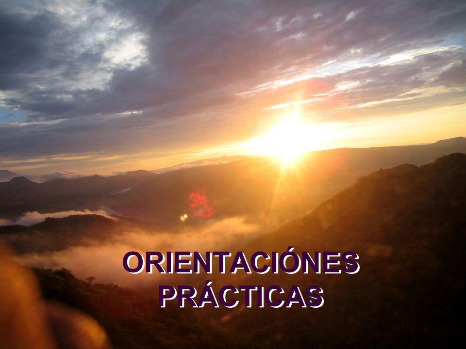 ORIENTACIÓNES PRÁCTICAS