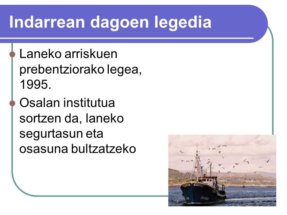 Indarrean dagoen legedia Laneko arriskuen prebentziorako legea, 1995.