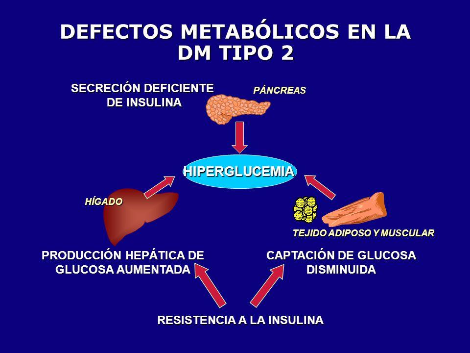 PATOGÉNESIS DE LA DM TIPO 2 Resistencia a la insulina Tolerancia a la Glucosa Disminuida Diabetes Predisposición Genética Factores Ambientales (obesidad) Reserva de célula Reserva de célula Deficiencia de insulina Compensación Descompensación + Normoglucemia