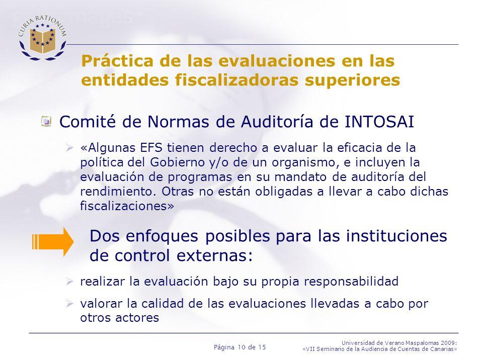 Página 10 de 15 Universidad de Verano Maspalomas 2009: «VII Seminario de la Audiencia de Cuentas de Canarias» Práctica de las evaluaciones en las enti