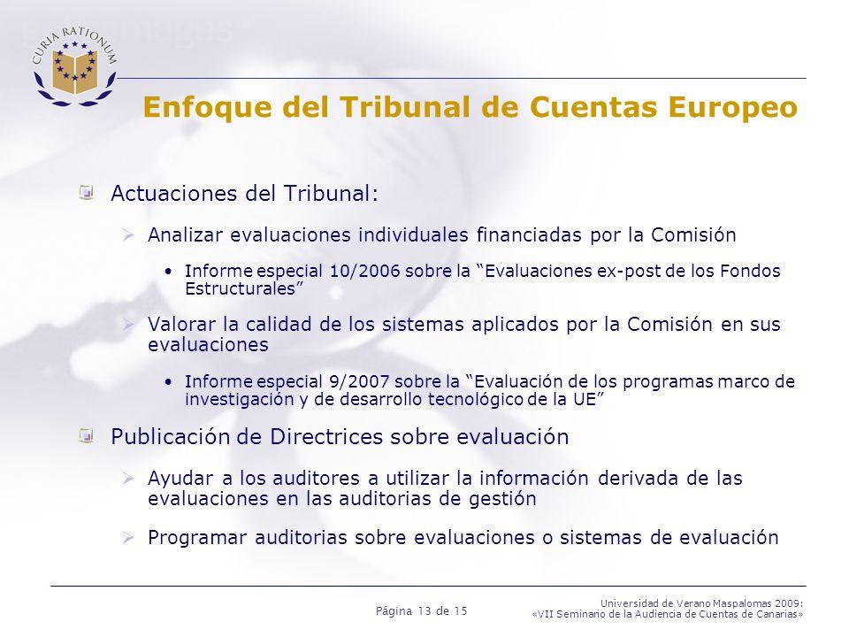 Página 13 de 15 Universidad de Verano Maspalomas 2009: «VII Seminario de la Audiencia de Cuentas de Canarias» Enfoque del Tribunal de Cuentas Europeo