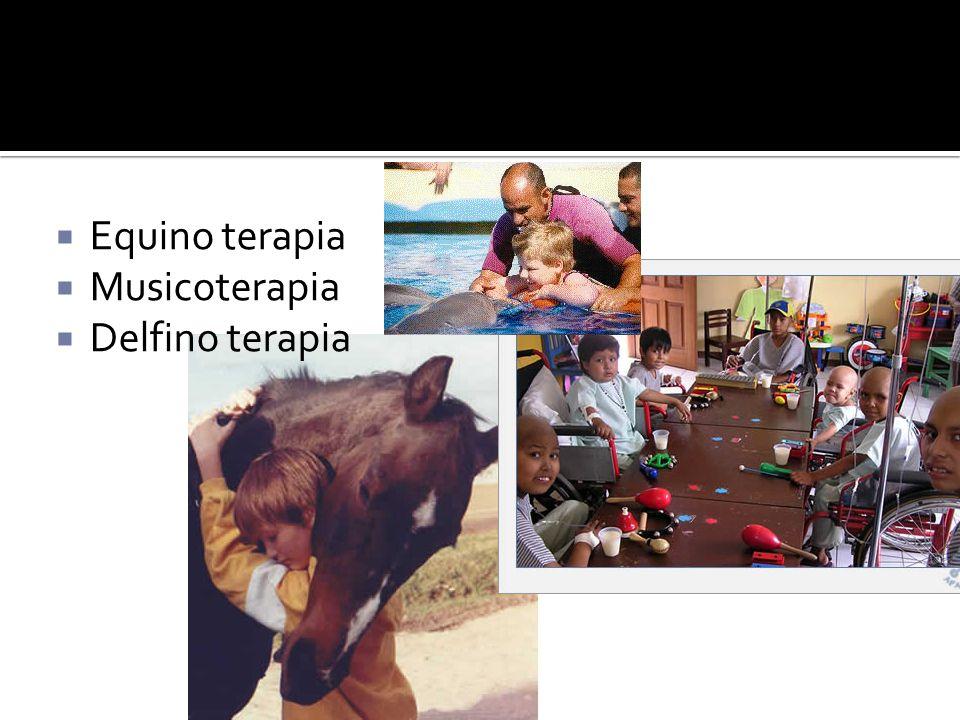 Equino terapia Musicoterapia Delfino terapia