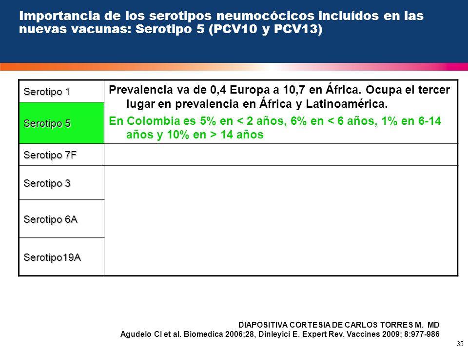 35 Importancia de los serotipos neumocócicos incluídos en las nuevas vacunas: Serotipo 5 (PCV10 y PCV13) Serotipo 1 Prevalencia va de 0,4 Europa a 10,