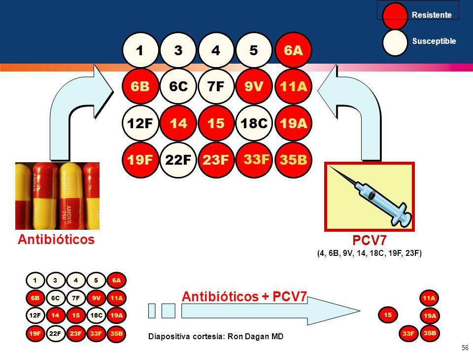 56 Antibióticos 1345 6B6C7F9V11A 12F 14 1518C19A 19F22F23F 33F 6A 35B PCV7 (4, 6B, 9V, 14, 18C, 19F, 23F) 1345 6B6C7F9V11A 12F141518C19A 19F22F23F33F