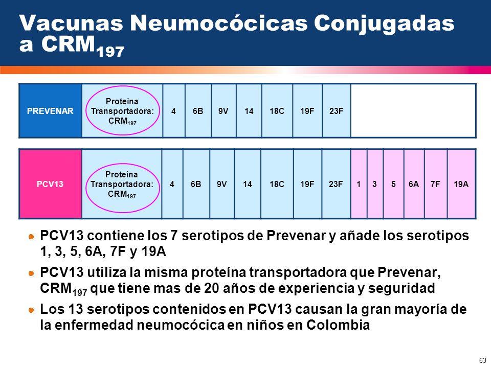 63 Vacunas Neumocócicas Conjugadas a CRM 197 PCV13 contiene los 7 serotipos de Prevenar y añade los serotipos 1, 3, 5, 6A, 7F y 19A PCV13 utiliza la m