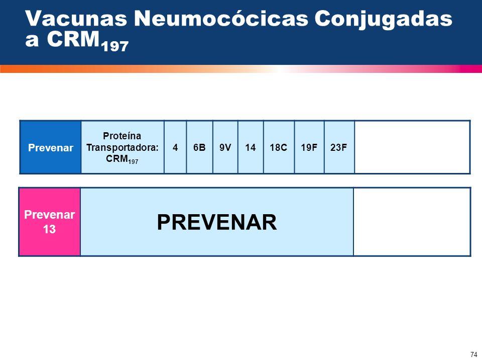 74 Vacunas Neumocócicas Conjugadas a CRM 197 Prevenar Proteína Transportadora: CRM 197 46B9V1418C19F23F Prevenar 13 PREVENAR