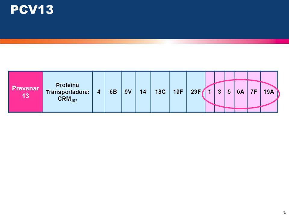 75 Prevenar 13 Proteína Transportadora: CRM 197 46B9V1418C19F23F1356A7F19A PCV13