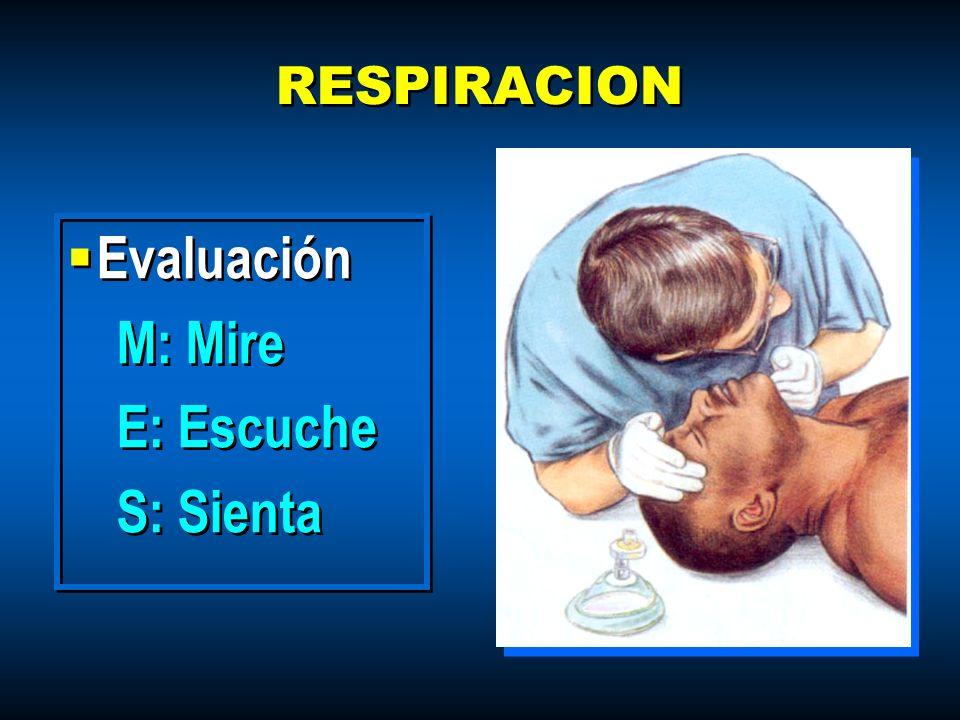 RESPIRACION Evaluación M: Mire E: Escuche S: Sienta Evaluación M: Mire E: Escuche S: Sienta