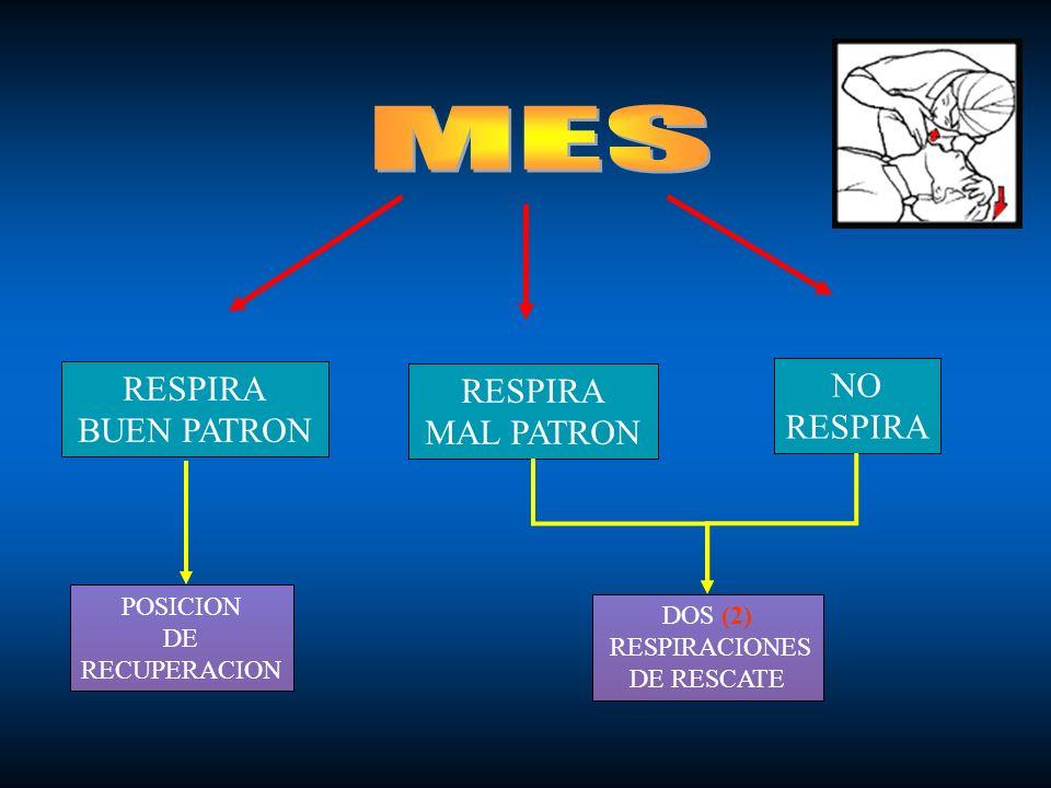 RESPIRA BUEN PATRON RESPIRA MAL PATRON NO RESPIRA POSICION DE RECUPERACION DOS (2) RESPIRACIONES DE RESCATE