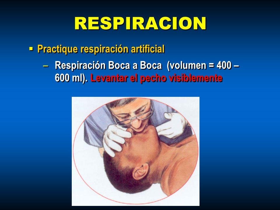 Practique respiración artificial – Respiración Boca a Boca (volumen = 400 – 600 ml). Levantar el pecho visiblemente Practique respiración artificial –