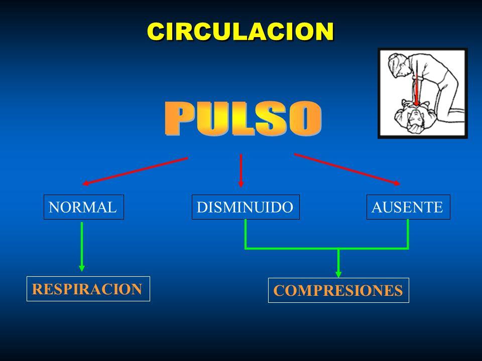 CIRCULACION NORMALDISMINUIDOAUSENTE RESPIRACION COMPRESIONES
