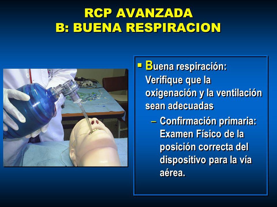 RCP AVANZADA B: BUENA RESPIRACION B uena respiración: Verifique que la oxigenación y la ventilación sean adecuadas – Confirmación primaria: Examen Fís