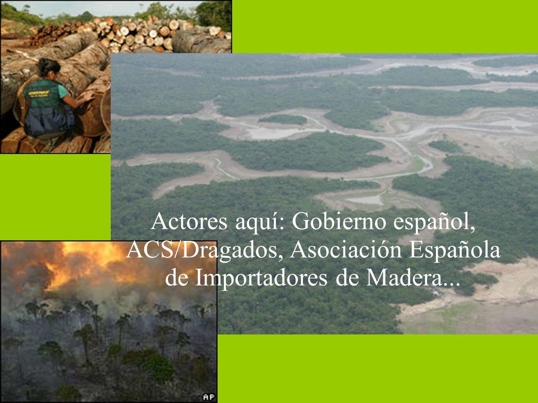 Actores aquí: Gobierno español, ACS/Dragados, Asociación Española de Importadores de Madera...