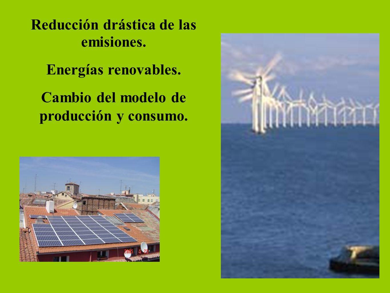 Reducción drástica de las emisiones. Energías renovables. Cambio del modelo de producción y consumo.
