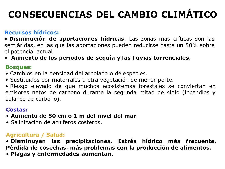 ¡NO A LOS MECANISMOS DE FLEXIBILIDAD .