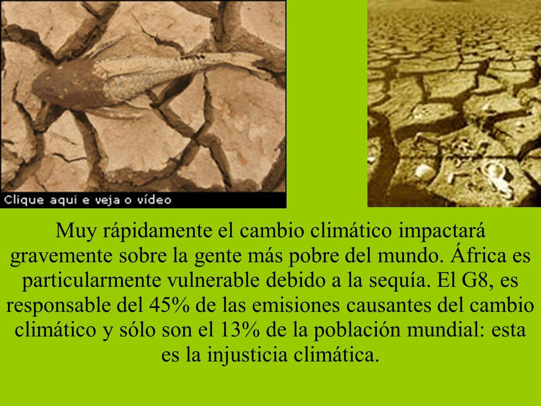 Reunión en Madrid sobre MDL - 10/2005 En el encuentro, se pretende dar a conocer a las empresas las oportunidades de negocio que se derivan de las distintas iniciativas puestas en marcha por la Administración española para el cumplimiento de los objetivos asumidos en el Protocolo de Kioto, entre las que destacan: - la creación de un Fondo Español de Carbono en el Banco Mundial, con una aportación de 170 millones de Euros para la obtención de 34 millones de CO2e; - la creación de la Iniciativa Iberoamericana de Carbono en la Corporación Andina de Fomento, con una aportación de 47 millones de Euros para la obtención de 9 millones de toneladas de CO2e; - la firma de quince acuerdos bilaterales de cooperación con Argentina, Bolivia, Brasil, Colombia, Costa Rica, Chile, Ecuador, El Salvador, Guatemala, Marruecos, México, Panamá, Paraguay, República Dominicana, Uruguay.
