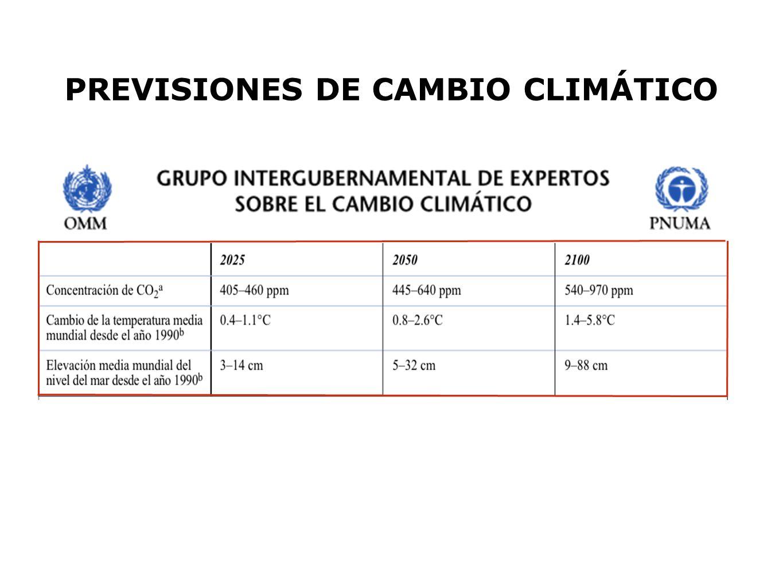 PREVISIONES DE CAMBIO CLIMÁTICO
