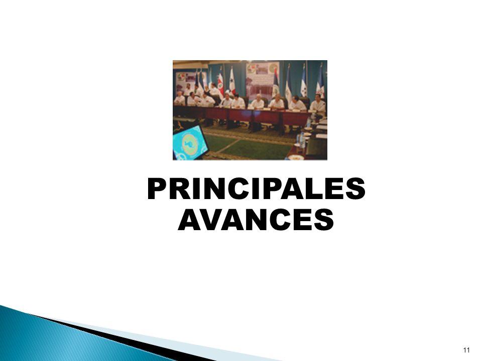 11 PRINCIPALES AVANCES