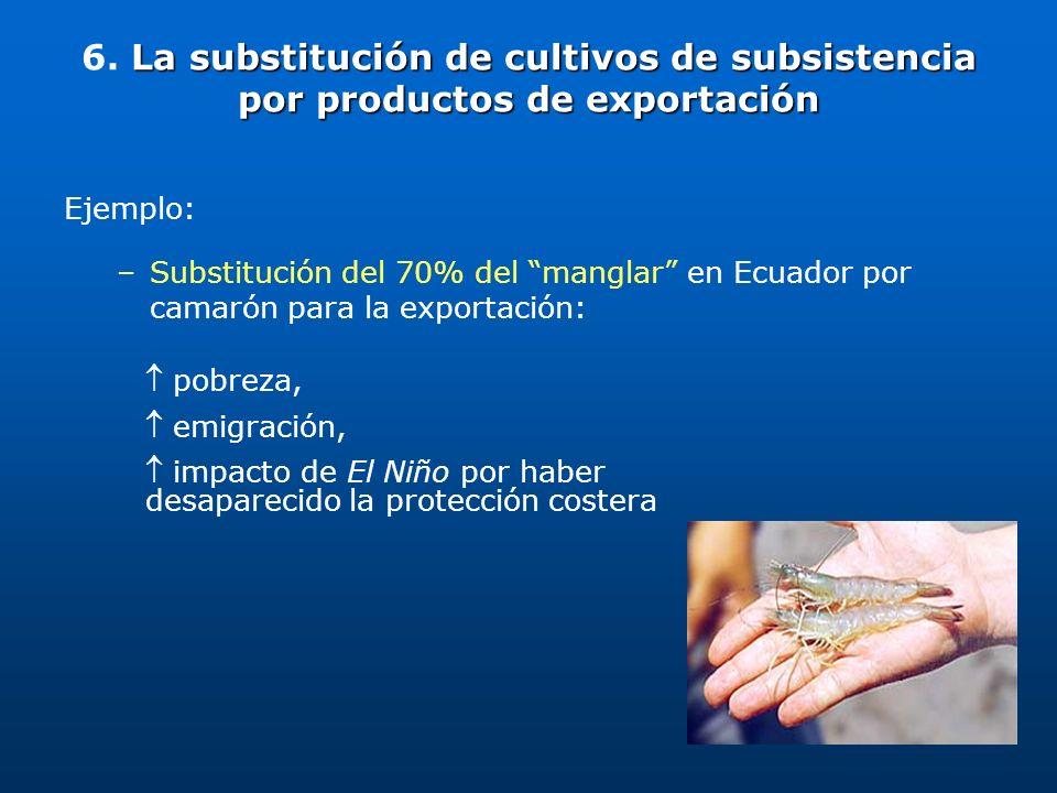 La substitución de cultivos de subsistencia por productos de exportación 6. La substitución de cultivos de subsistencia por productos de exportación E
