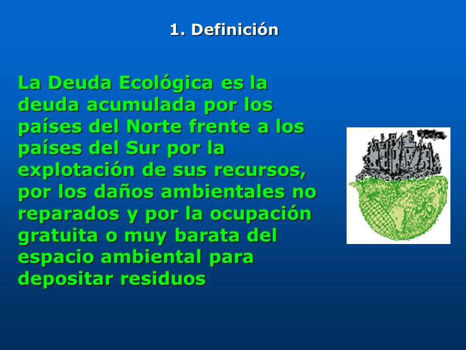 Es la apropiación ilegítima por parte de los países del Norte de la capacidad de absorción de gases de efecto invernadero de la atmósfera, de la nueva vegetación, del suelo y de los océanos 2.
